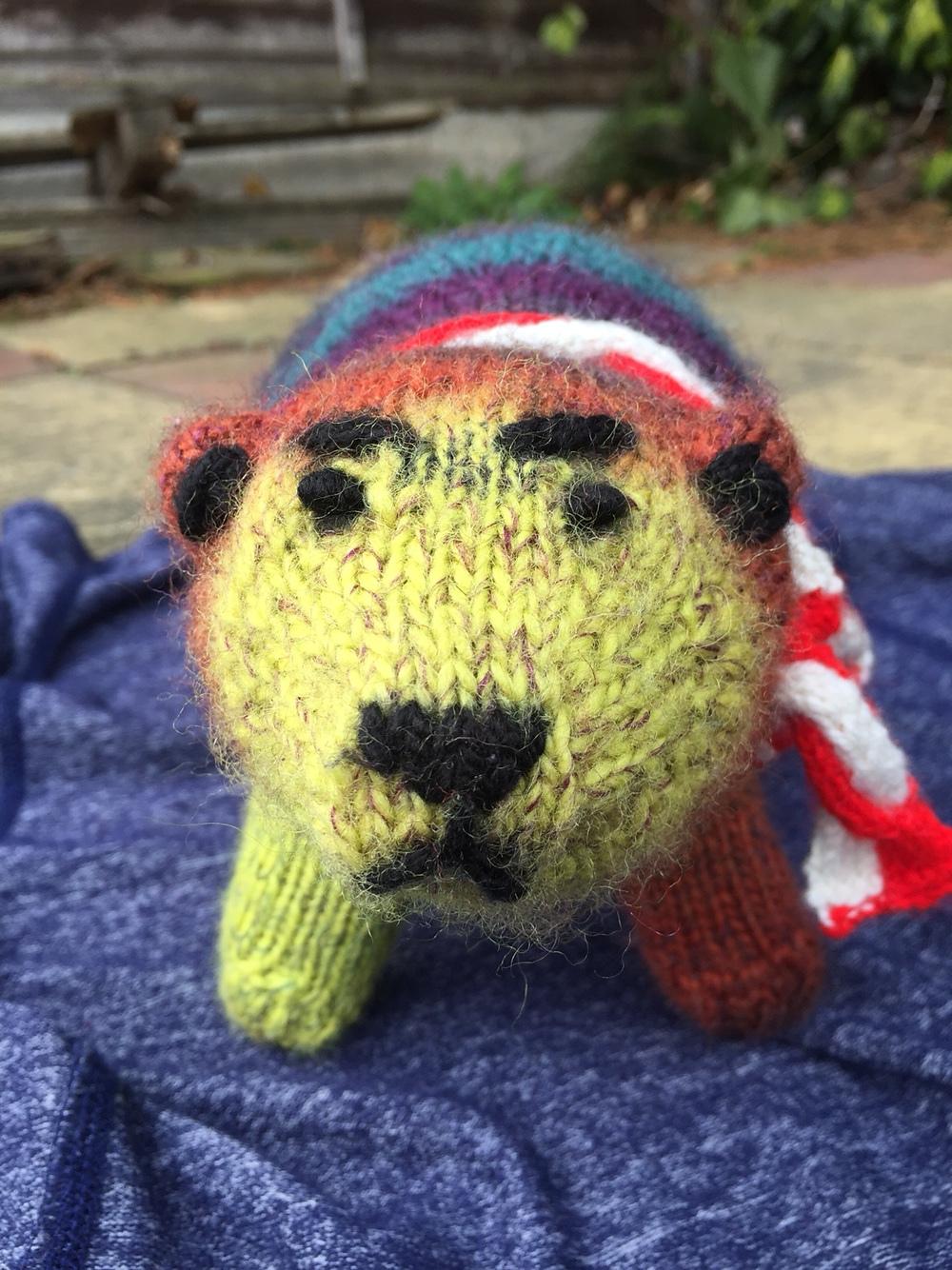 Bradac, knit by laraghdaniel