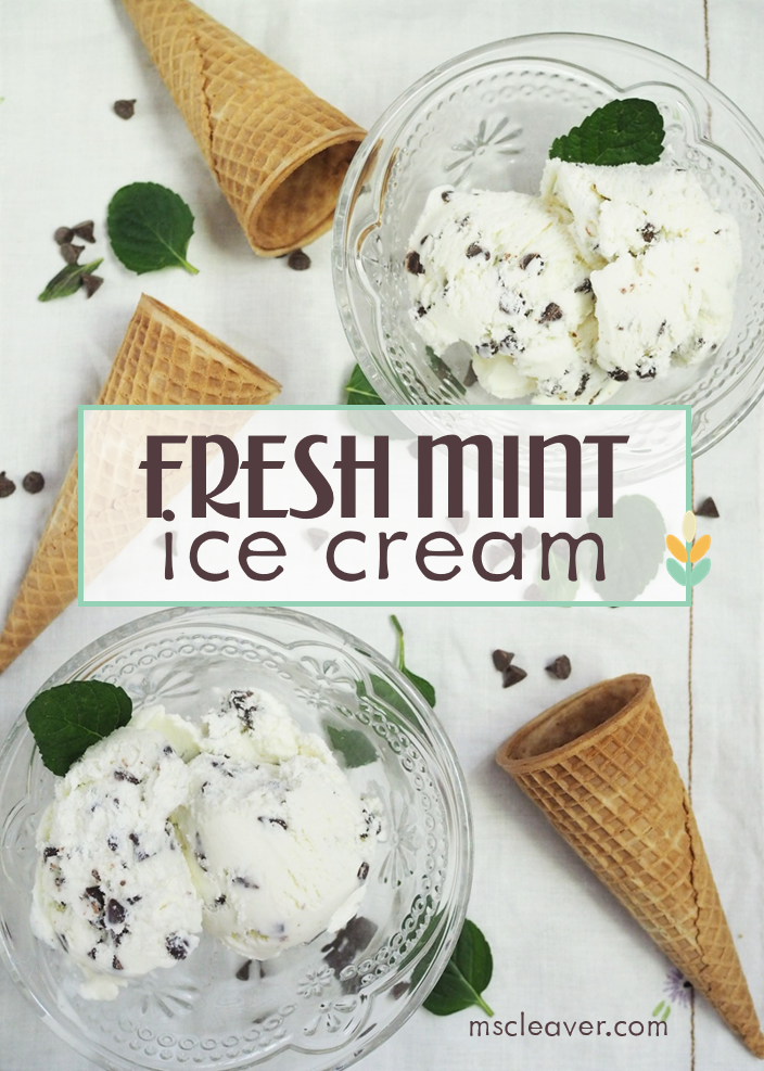 Fresh Mint Ice Cream with Chocolate Chips