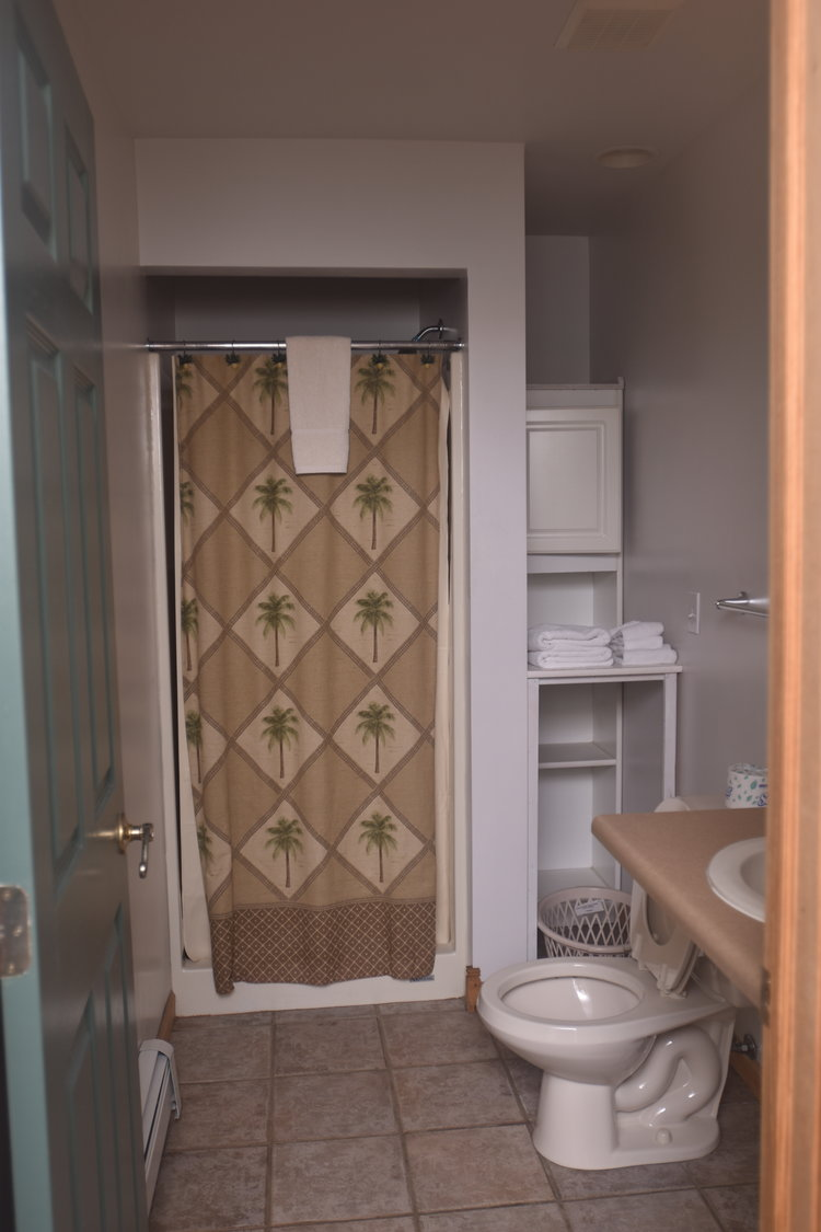 Blue Spruce Motel - Room Number 12 - Interior Bathroom.jpeg