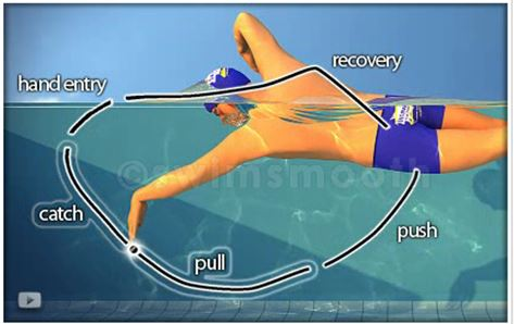 Image from:  www.SwimSmooth.com