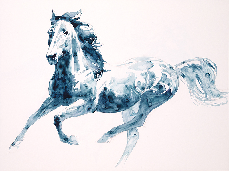 Sapphire Gallop #2