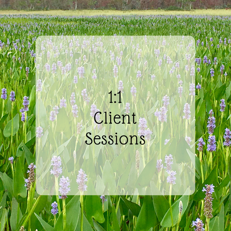 1-1client-sessions.png