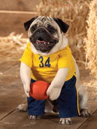 blue and gold football player.jpg