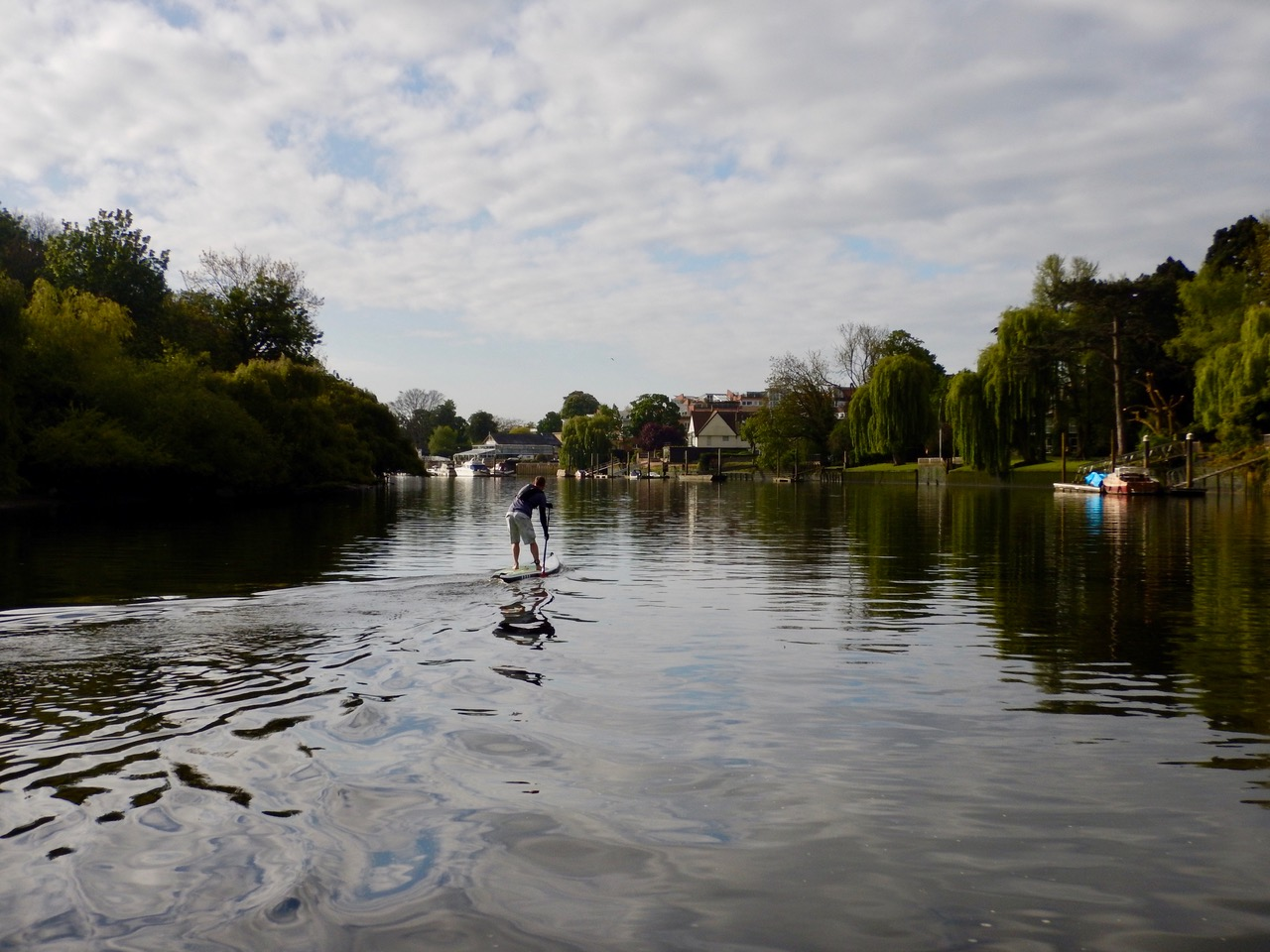 SUP Experience Richmond Upon Thames.jpeg