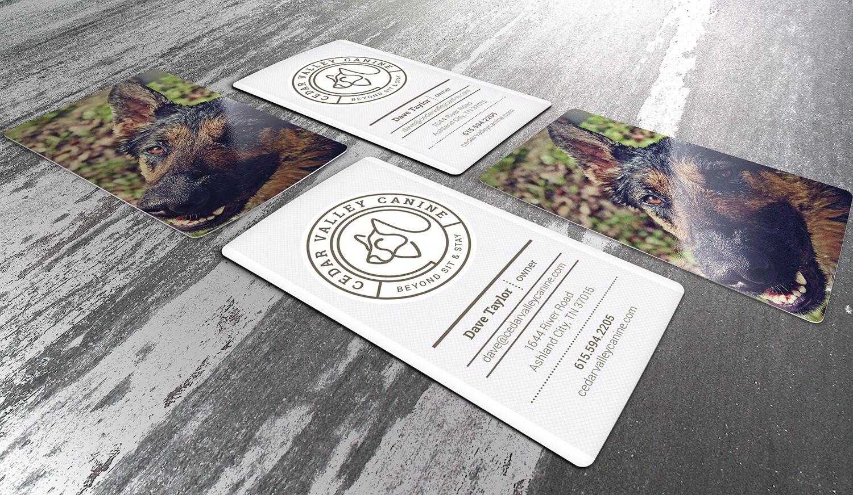cedar-valley-canine-identity-1.jpg
