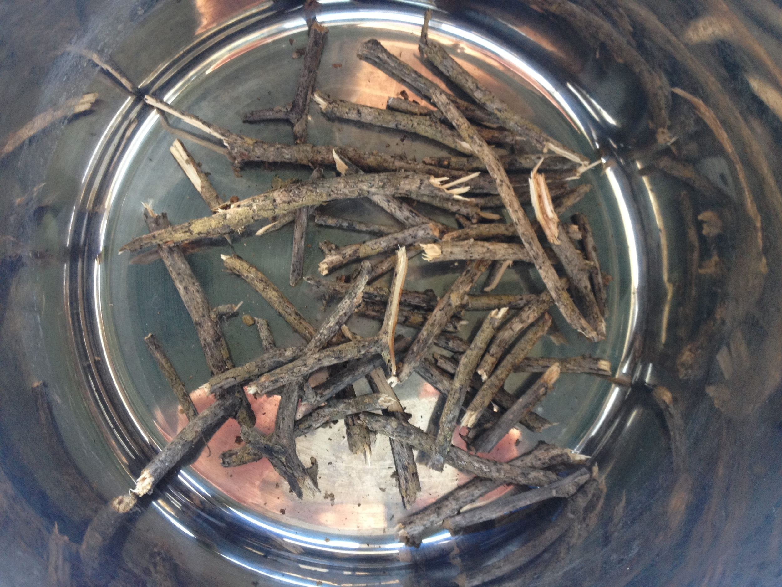 Osage Orange Twigs for Dyeing