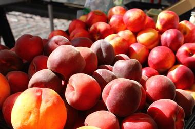 fruittt.jpg