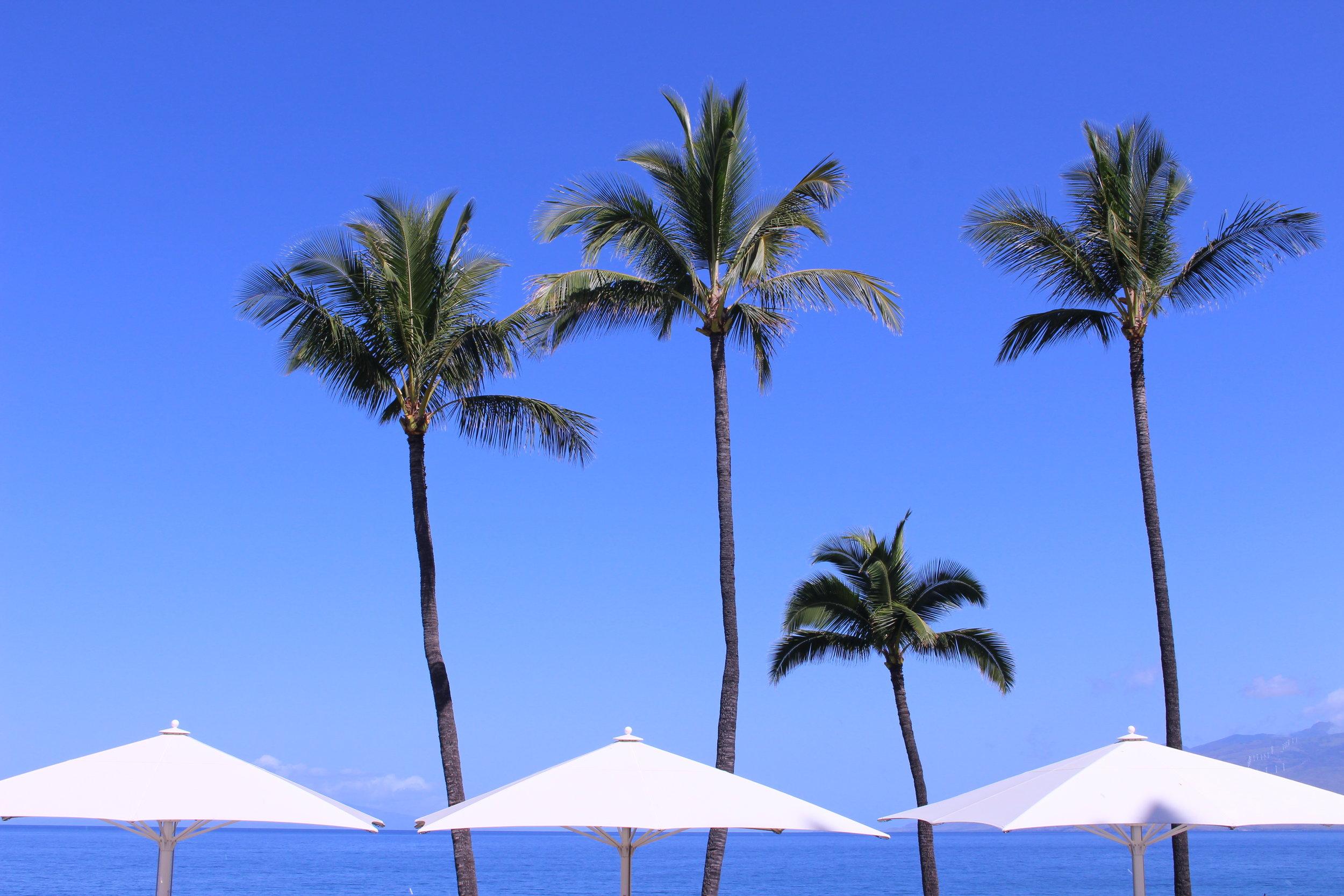 Views at Wailea Beach Resort