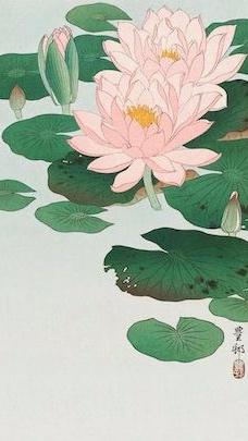 Pink lotus :  Balancing yet moisturizing, pink lotus heals the skin, while nurturing it and relieving stress.    ewg = 1
