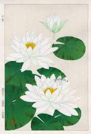 White lotus :  Calming, soothing, and balancing for the mind, as well as the skin.    ewg = 1