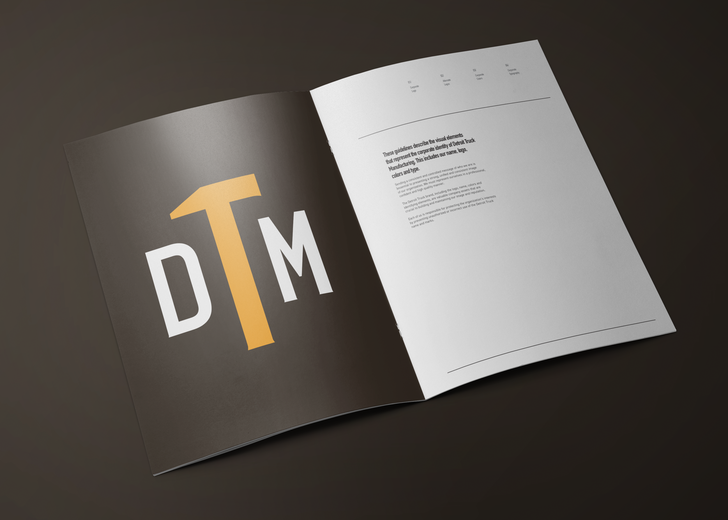 DTM Logo Guide Book_Mock S1.png