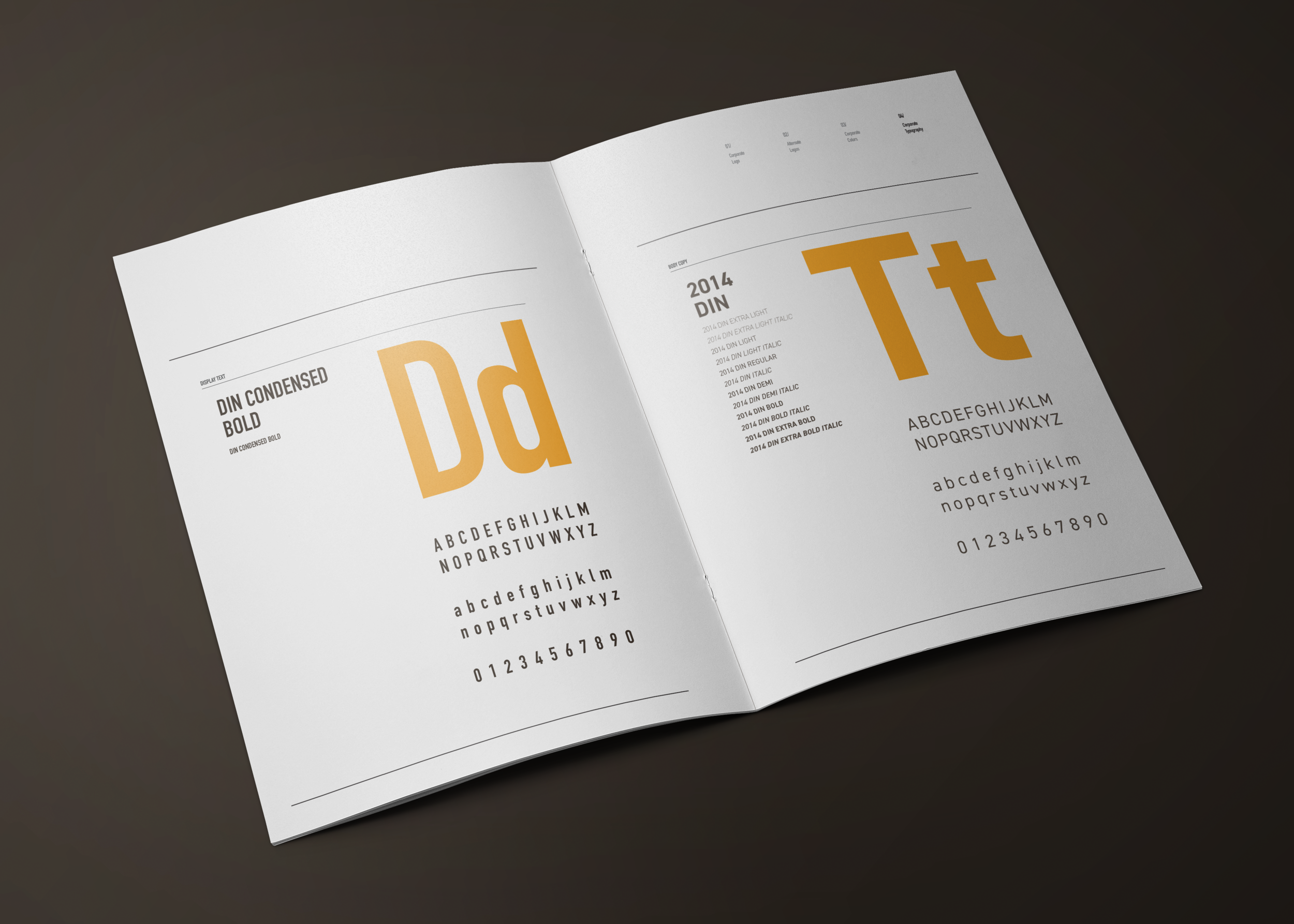 DTM Logo Guide Book_Mock S7.png