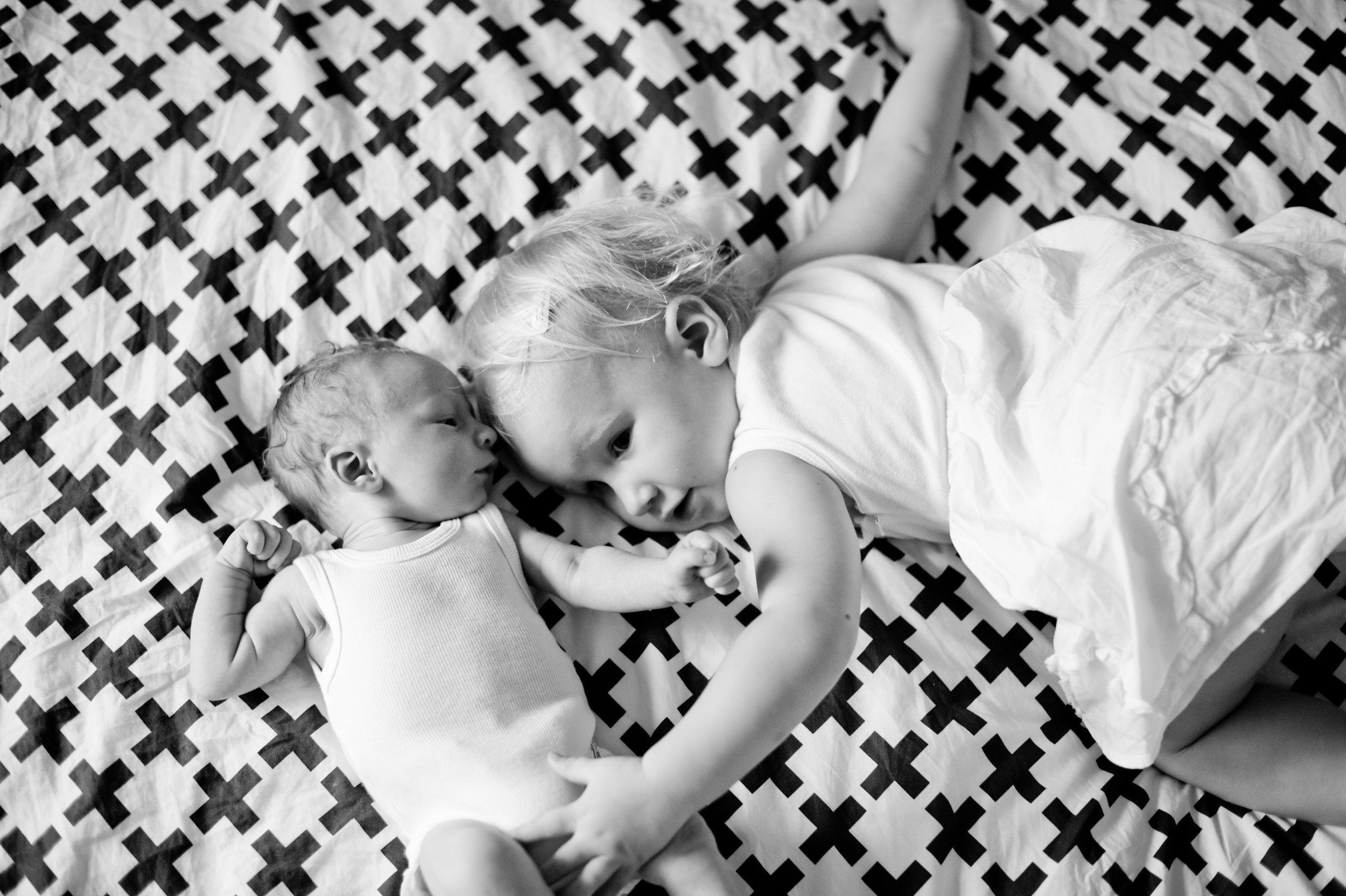 tarragindi newborn photography
