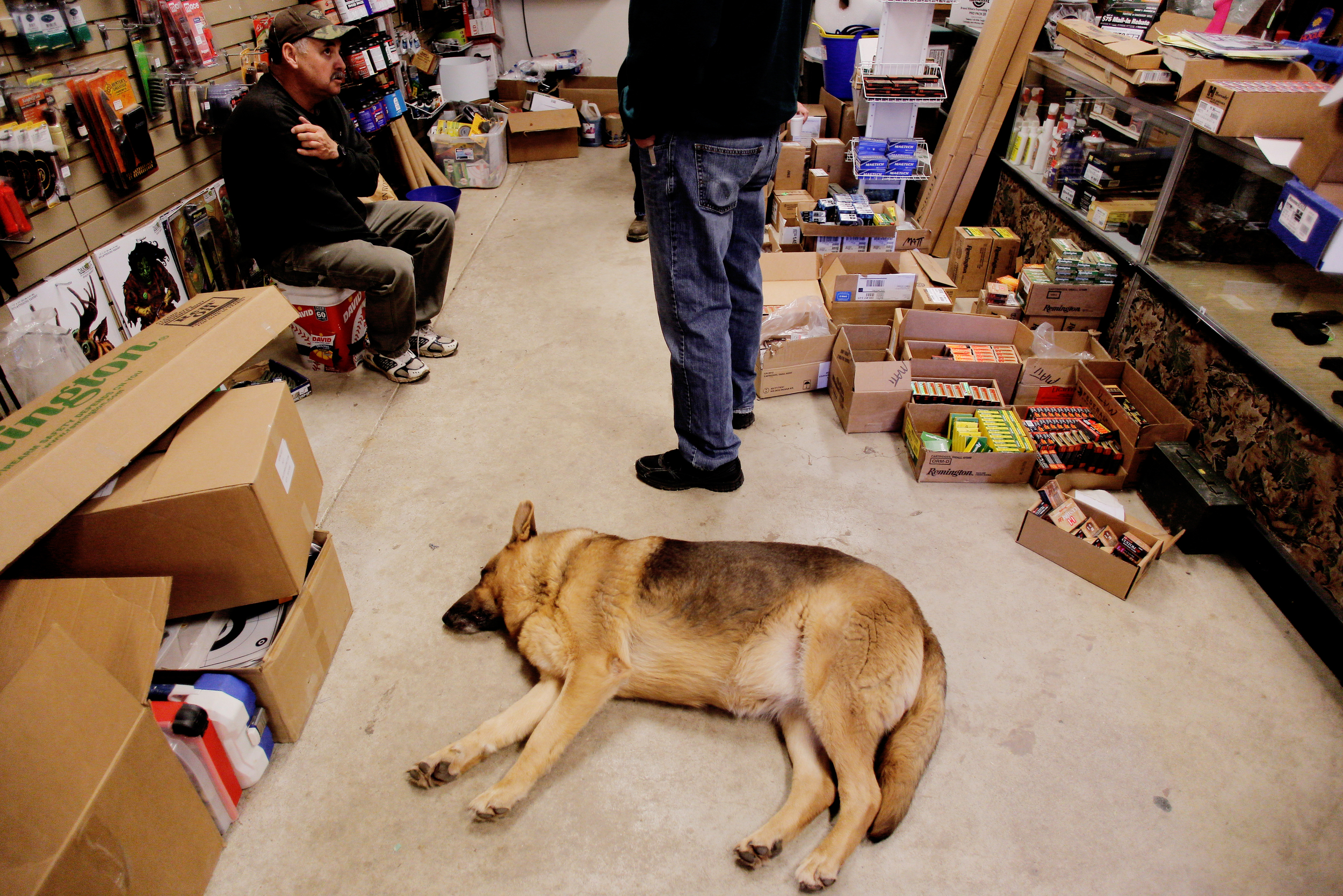 The store's German shepherd security dog, Piper, takes a nap on the floor.