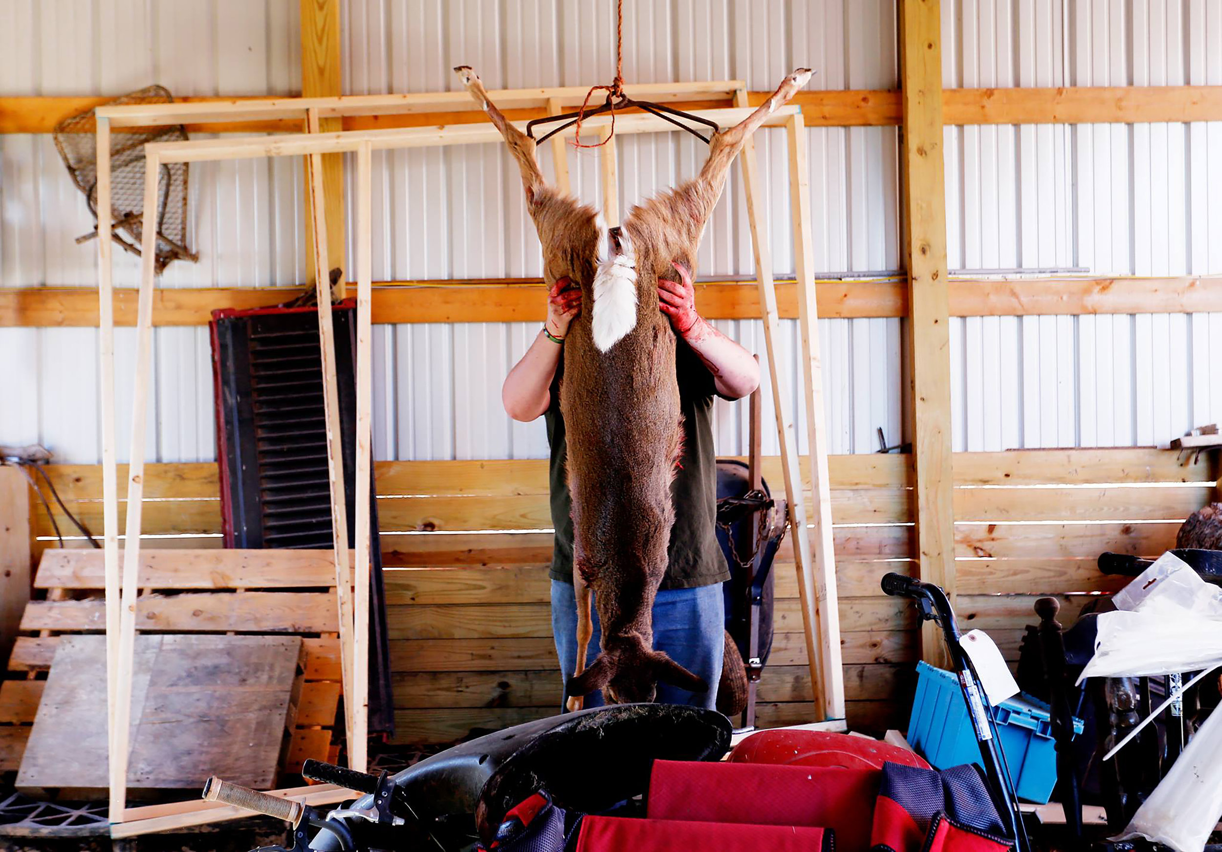 Tanner Koons guts a freshly hunted deer in his barn. Glouster, Ohio, 2016.