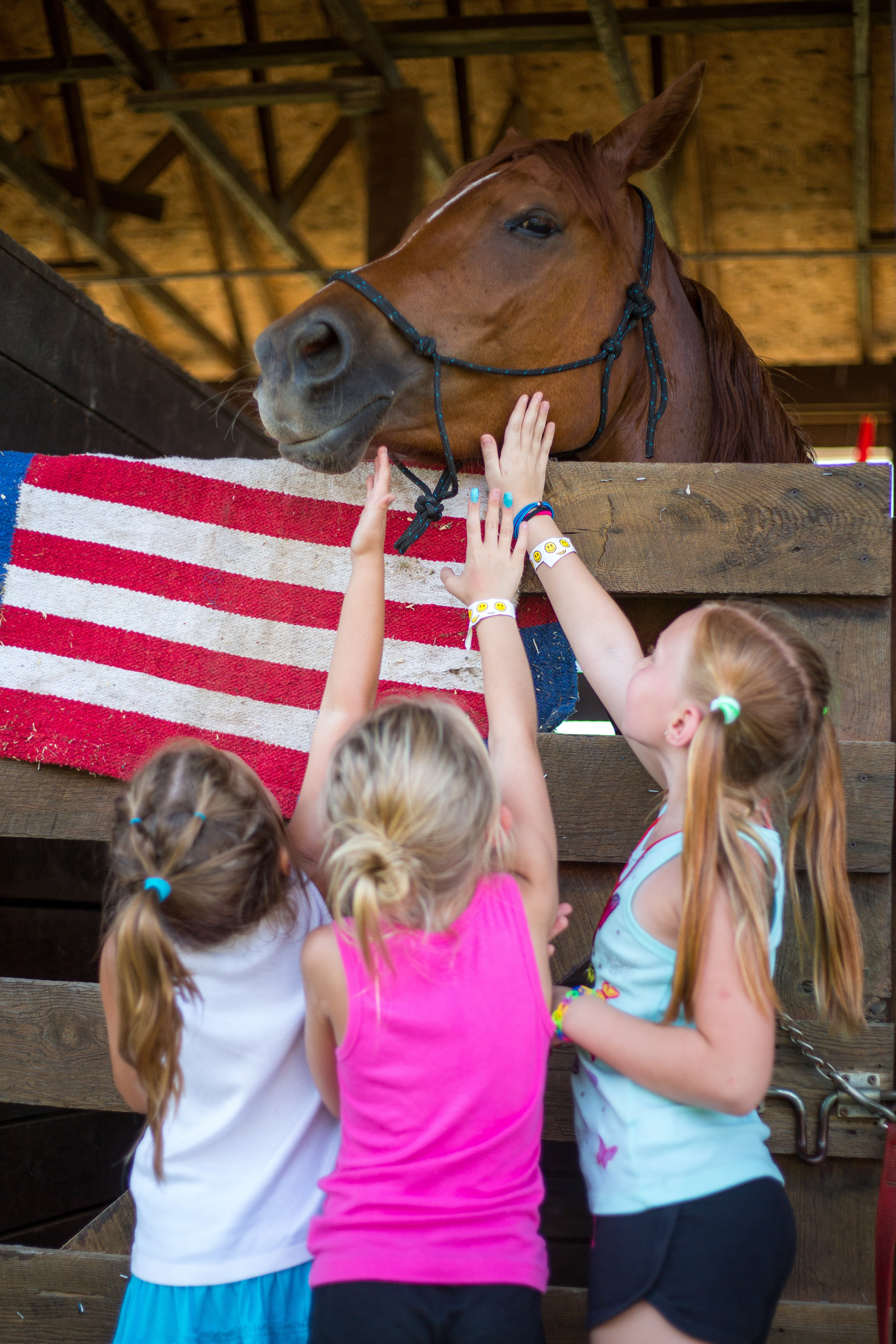 Ashlyn McDougan, left, Avah Dupain and Savannah Dupain pet a horse named Octavius at the Hookstown Fair in Hookstown on Saturday afternoon.