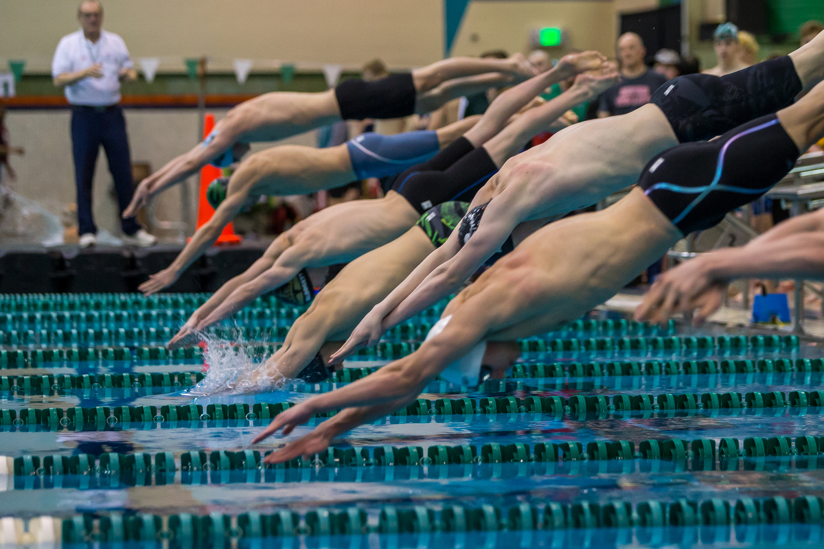 Swimmers dive into the water during the second heat of the 200 yard freestyle relay during the 2017 MHSAA Boys D2 Swim and Dive Championships at Eastern Michigan University on Saturday, March 11, 2017. Dexter High School's swim team won the overall championship. Matt Weigand | The Ann Arbor News