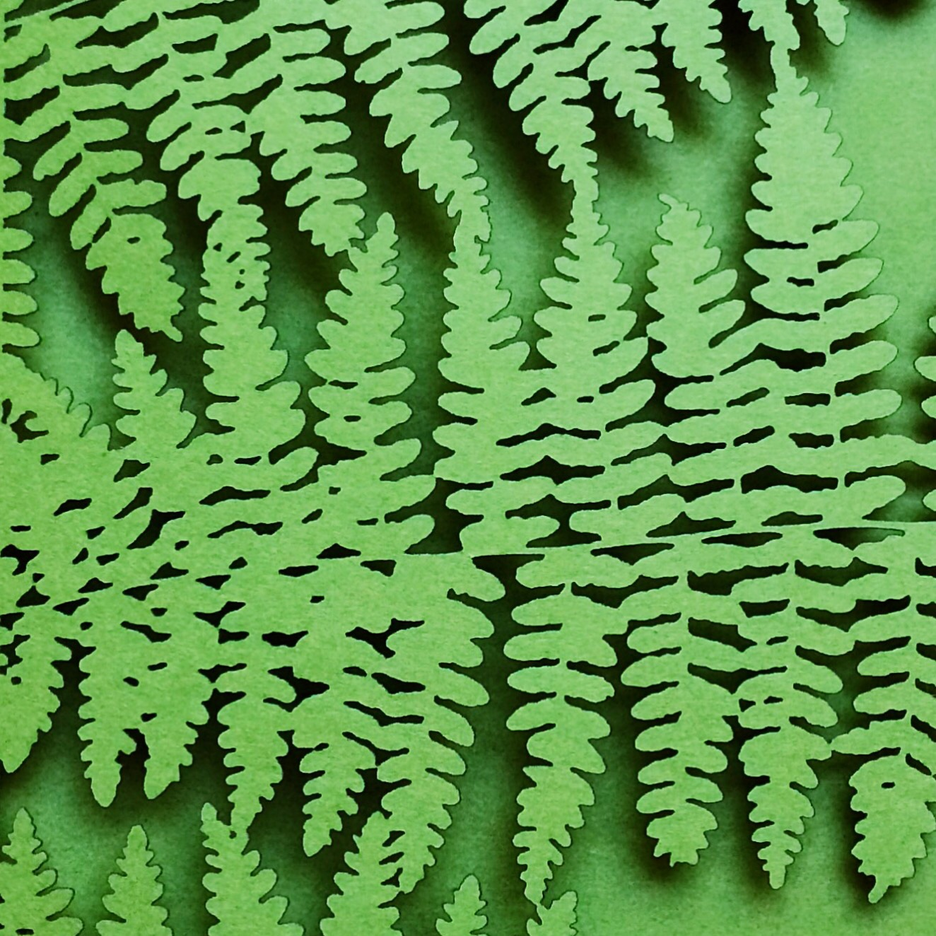 Laser cut fern themed invitations by 6 by 6 Arts.