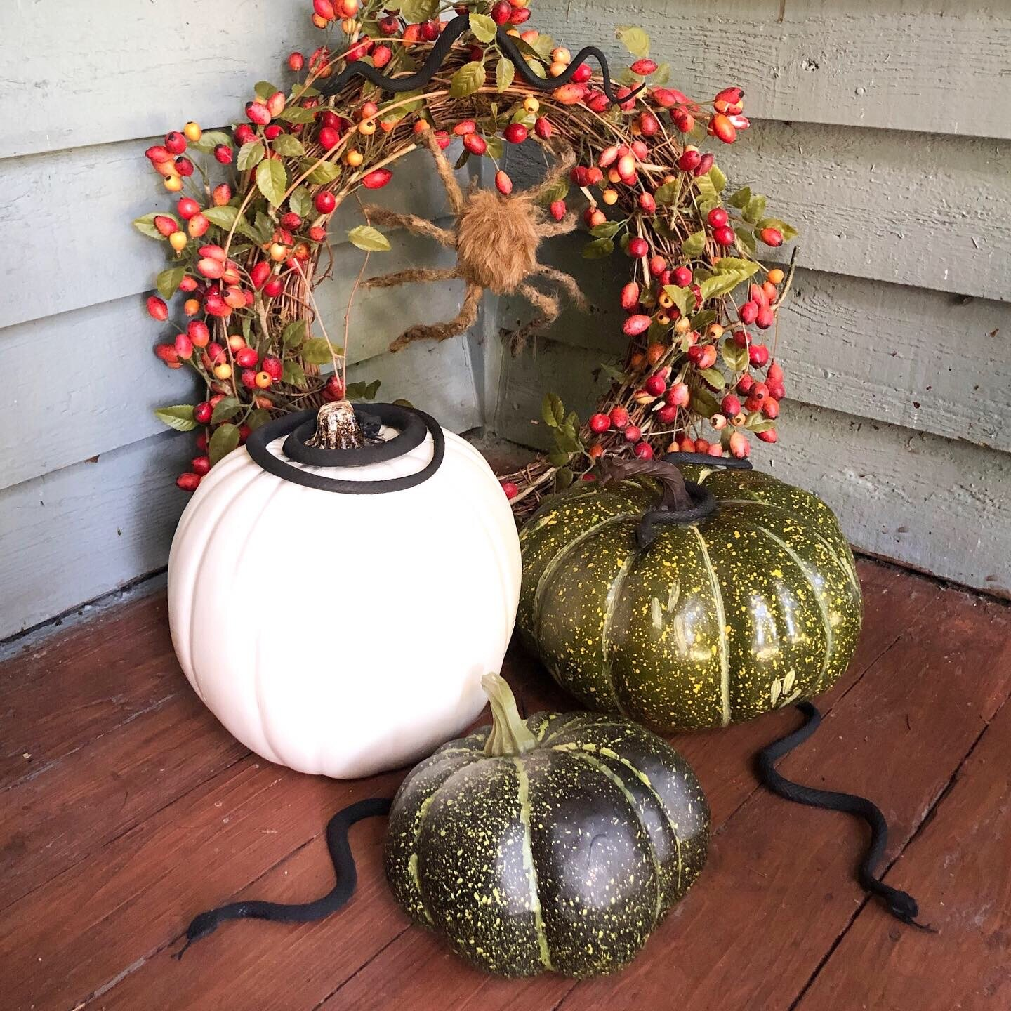 A little corner of our front porch. Including a handmade tarantula spider, created from instructions by  Christine McConnell .