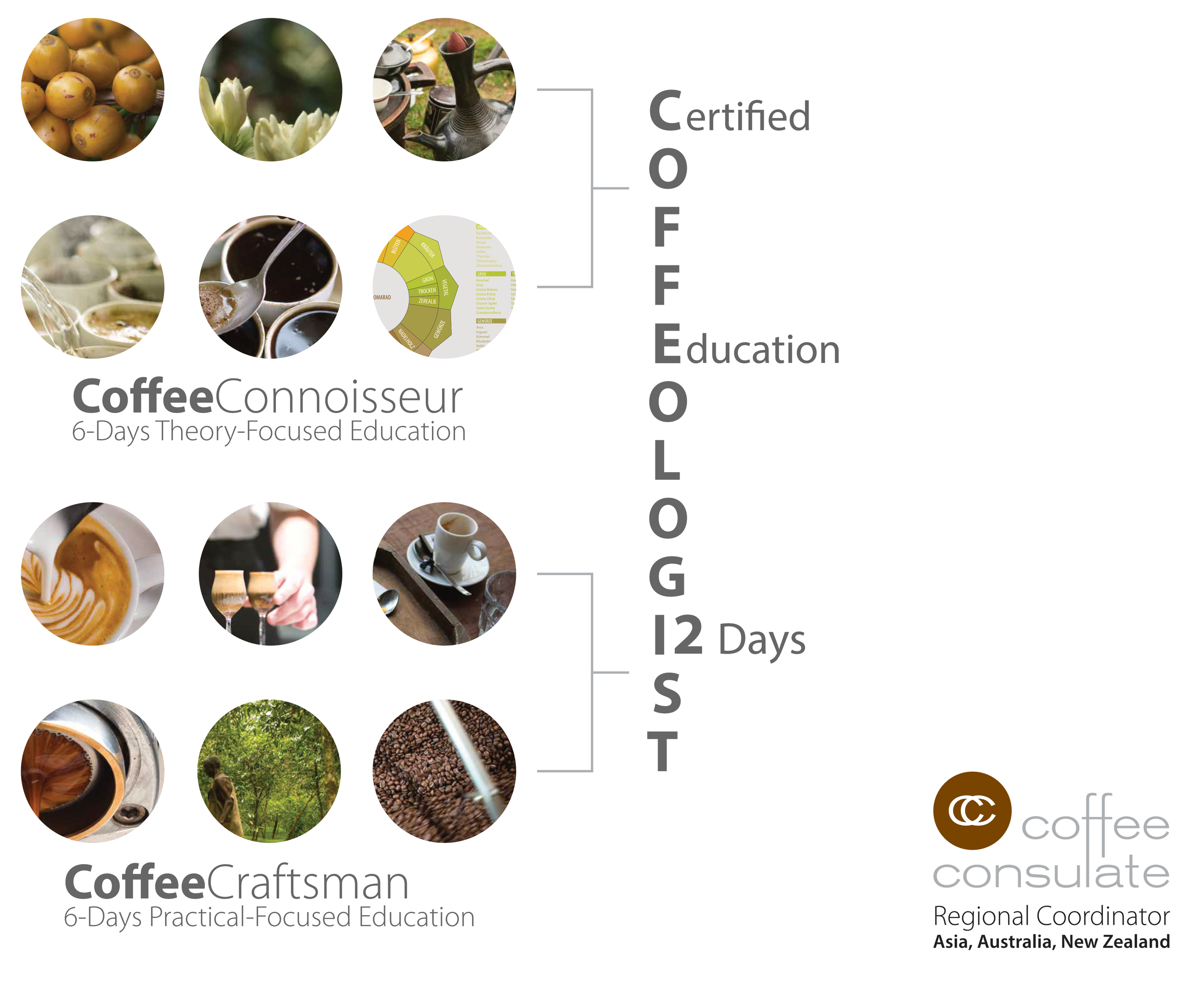 Coffeologist Structure.png