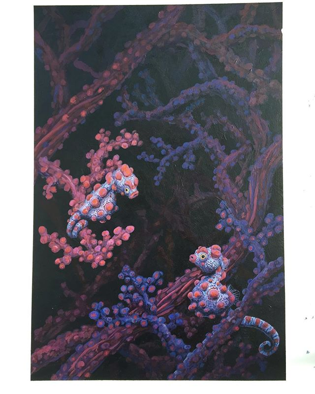 Hippocampus bargibanti  #pygmyseahorse #acrylicpainting #wildlifeart #scientificillustration