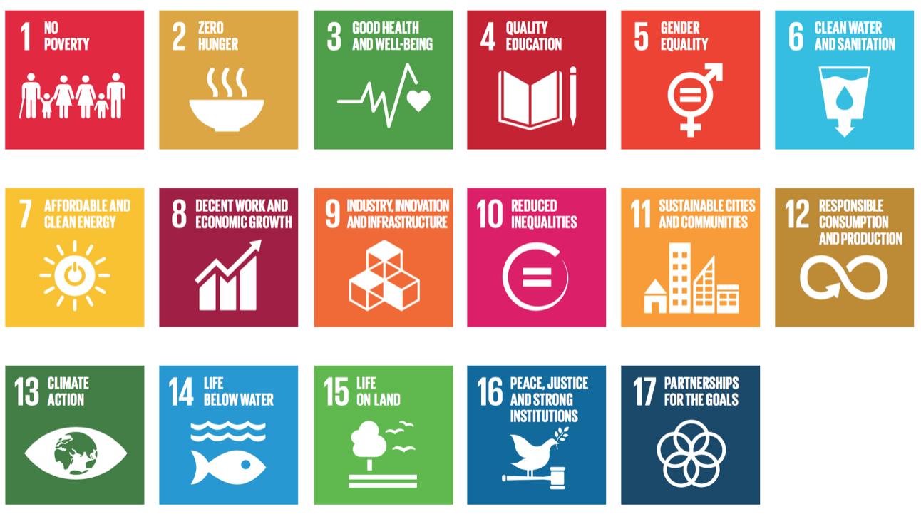 FN mål .png