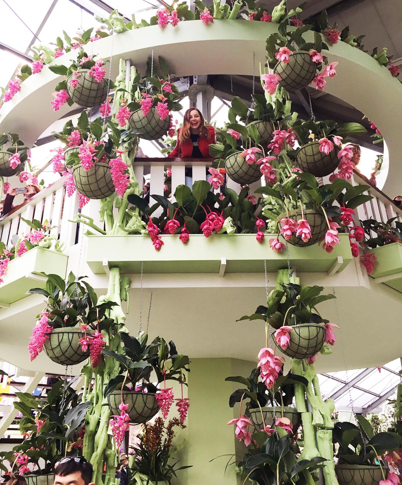 flower-room.jpg