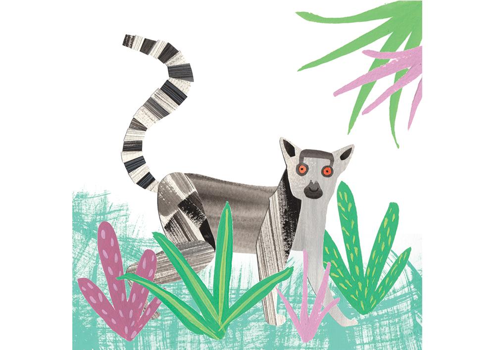 lemur web rectangle.jpg