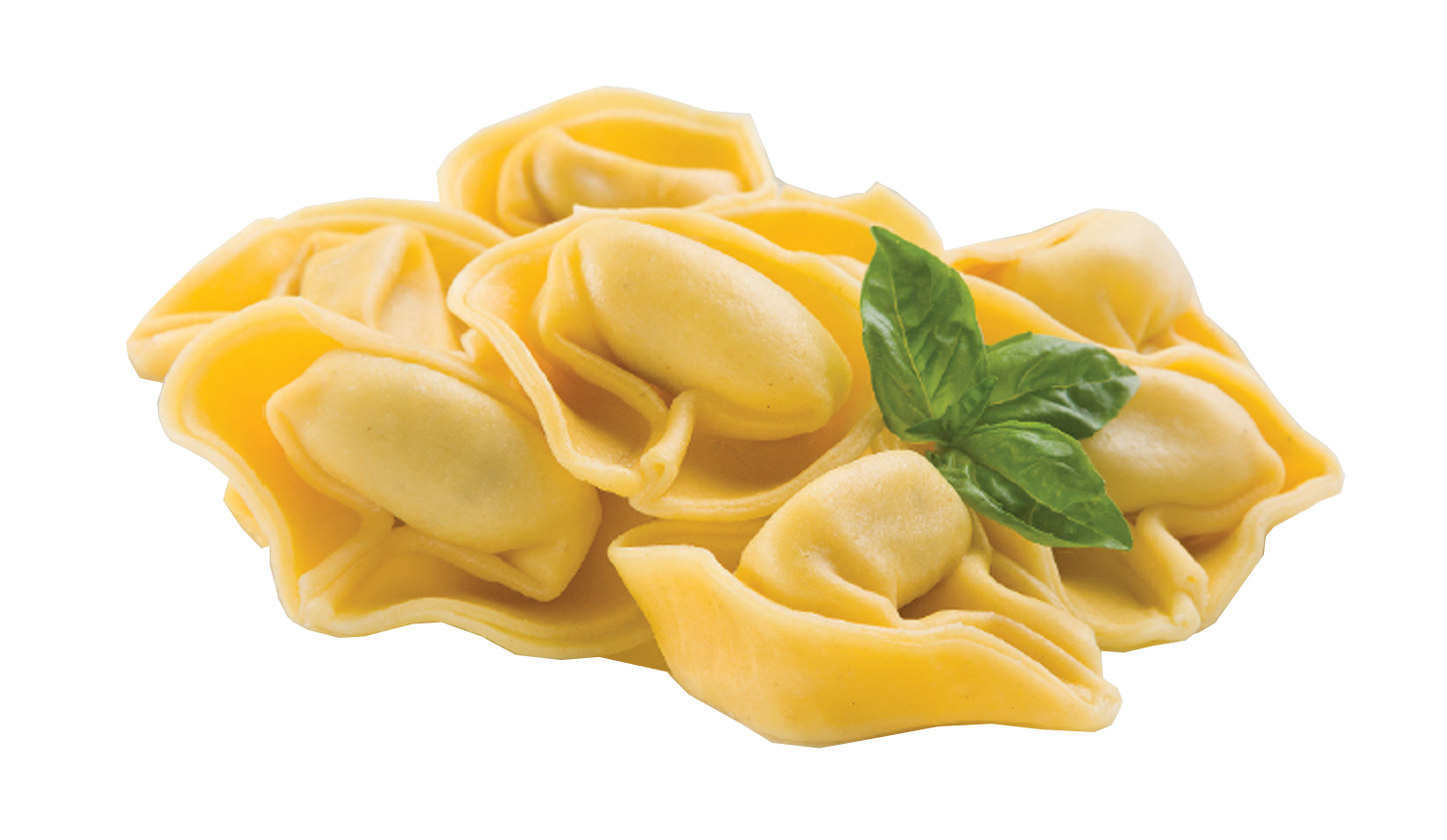 Provolone Five Cheese Tortelloni -