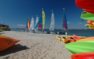 sailboats at CK.jpg