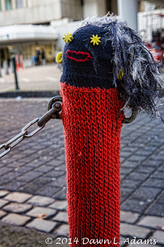 Knit Bombing-16.JPG