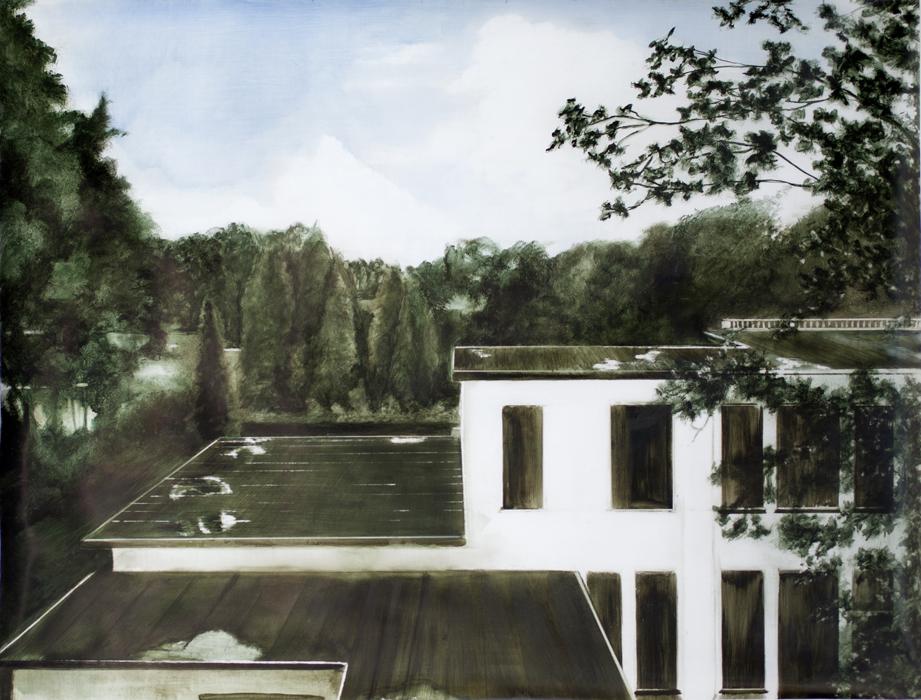 Chamberlain,Weir+ Rooftop View, Boerhave, 2014.jpg