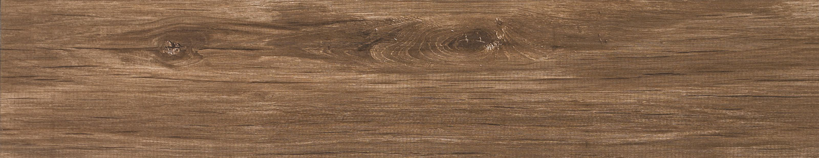 DLO1650 – Nut