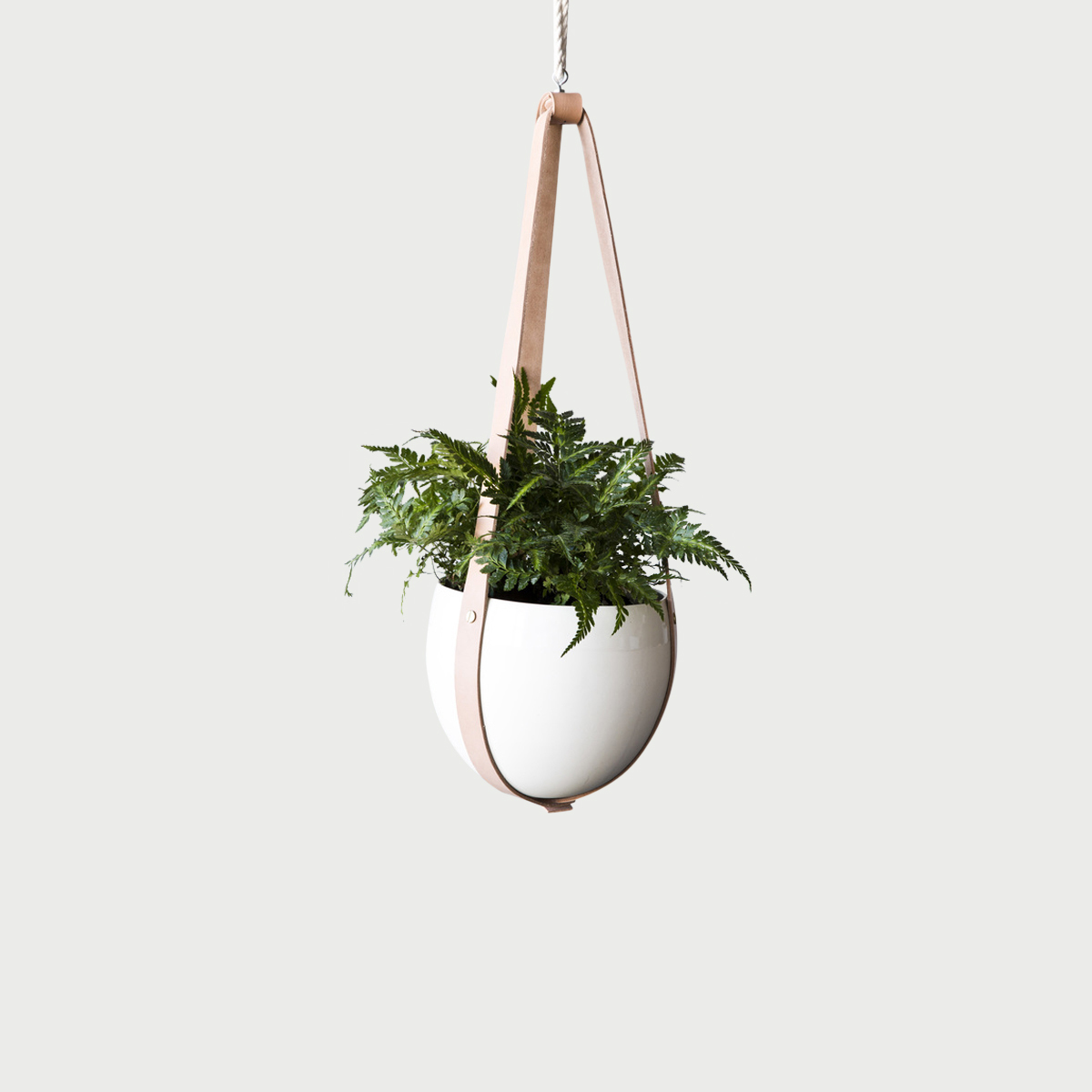 farrah_sit_leather-ceiling-planter_1024 (1).jpg