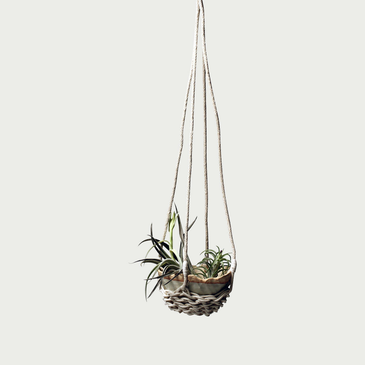 HangingBasket_019.jpg