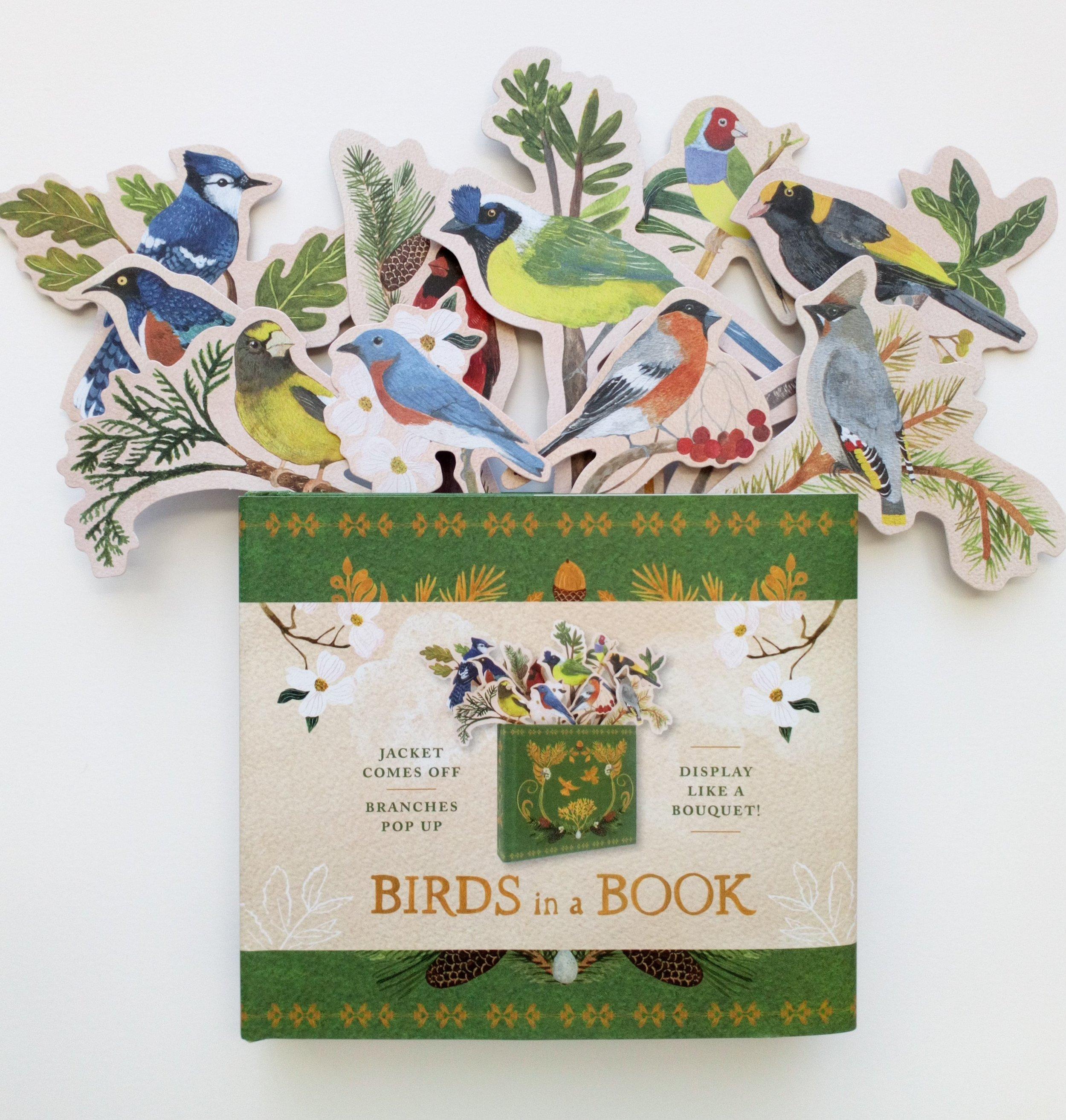 Bird book 6.JPG
