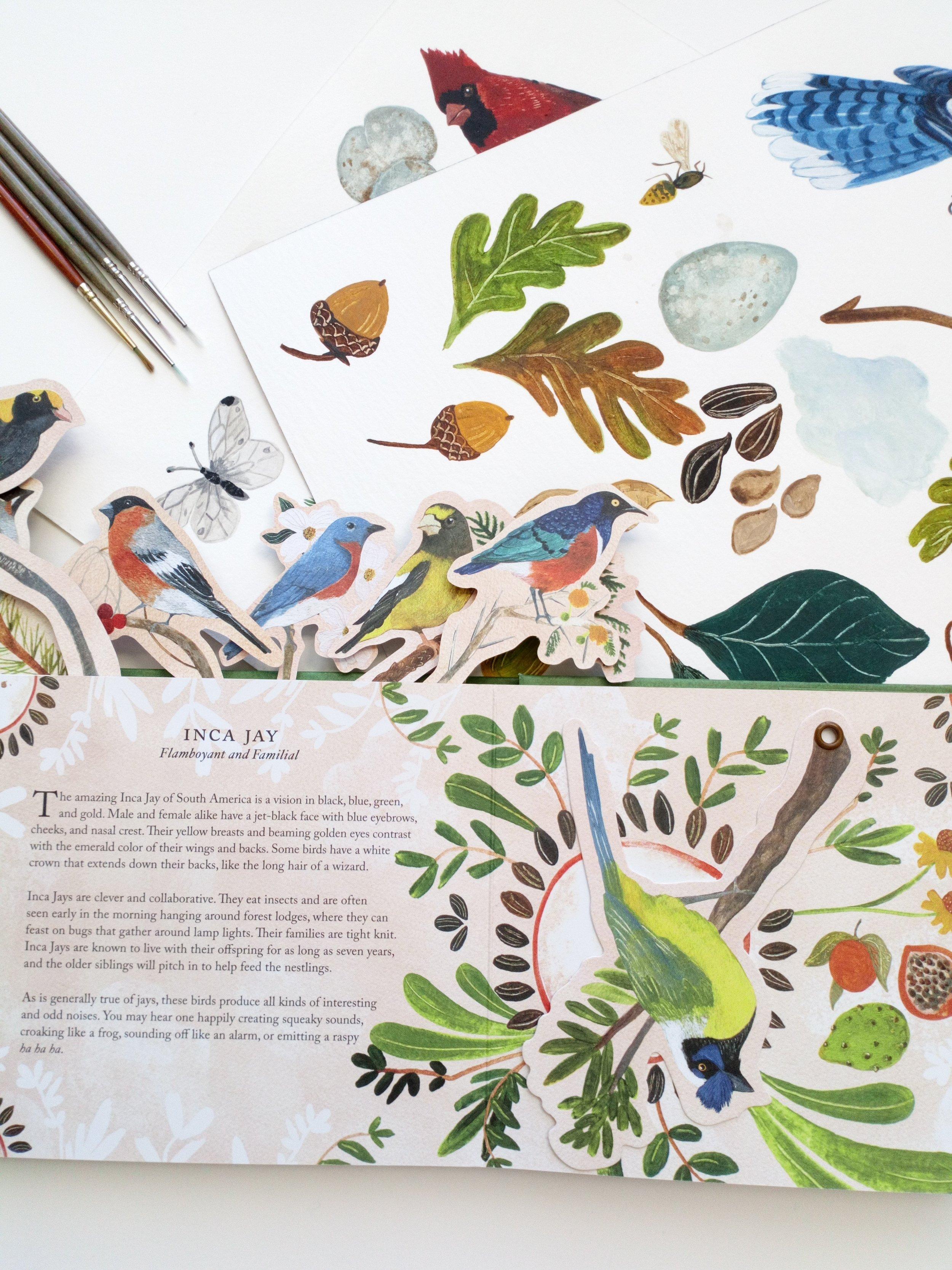 Bird Book 11.JPG