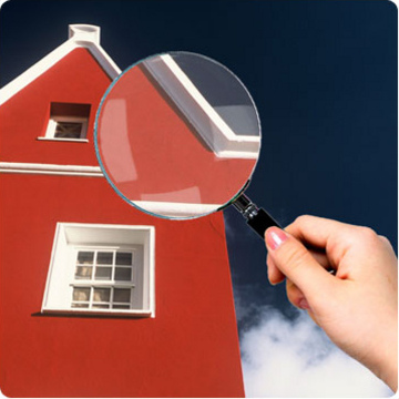 You never know what could be lurking behind the walls, so get your home thoroughly inspected !