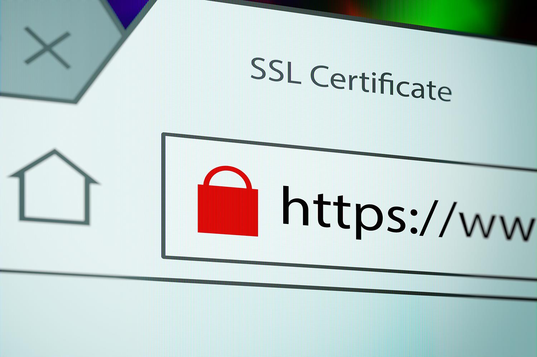 SSL Security.jpg