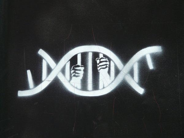 geneticdeterminism.jpg