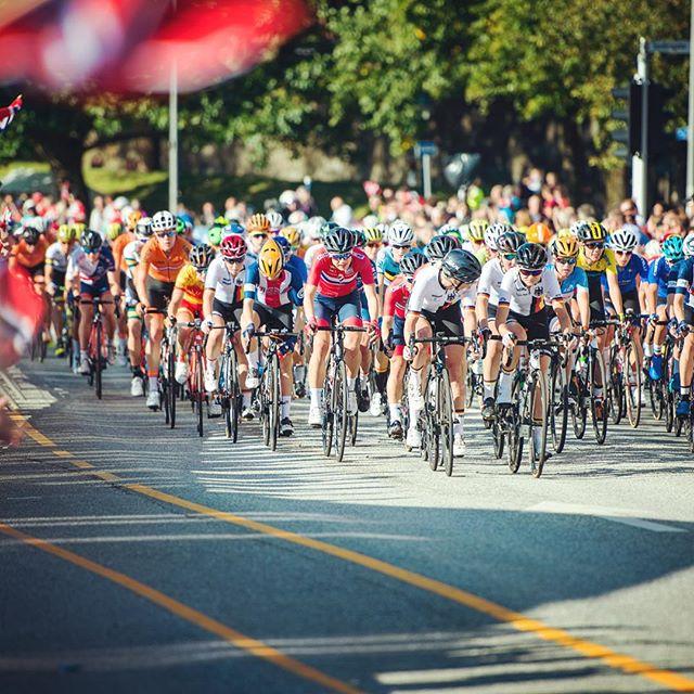 Just cycling... #2vm #uci #sykkelvm #sykkelvm2017 #sykkelvmbergen2017 #bryggen #bergen #gonorway #heianorge🇳🇴