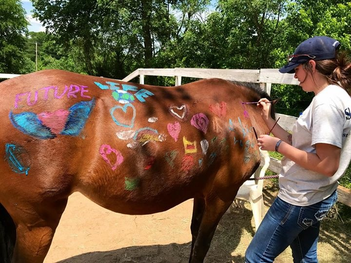 Horses For Hope Five Love Language Equine Workshop