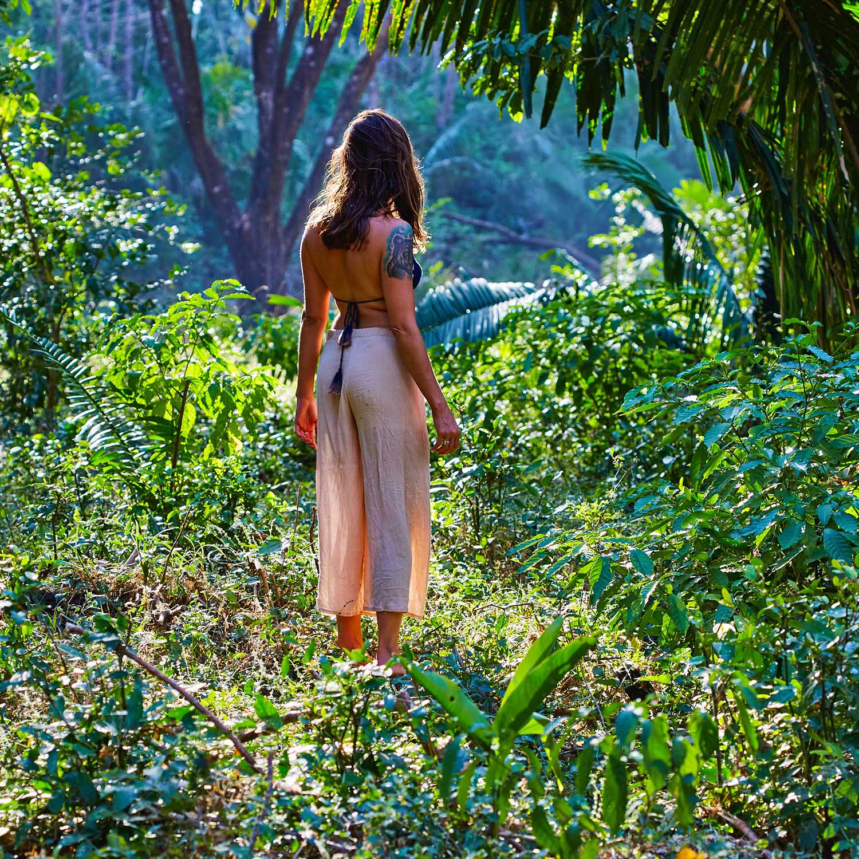 AV - Jungle View-2.jpg