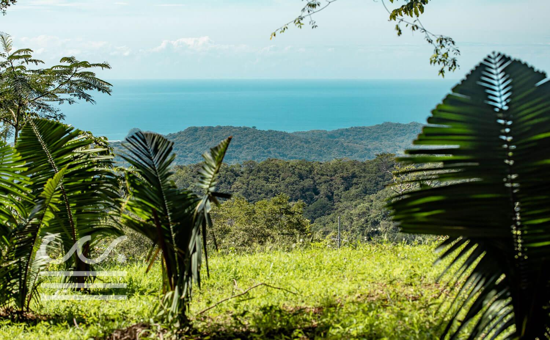 Bosque-Verde-45B-Wanderlust-Realty-Real-Estate-Rentals-Nosara-Costa-Rica-6.jpg