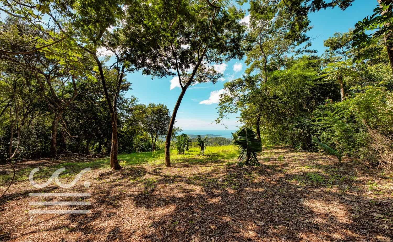 Bosque-Verde-45B-Wanderlust-Realty-Real-Estate-Rentals-Nosara-Costa-Rica-5.jpg
