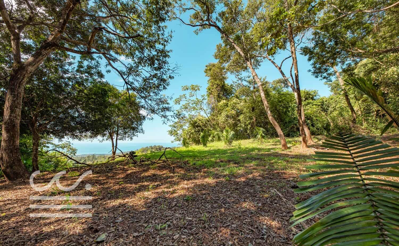 Bosque-Verde-45B-Wanderlust-Realty-Real-Estate-Rentals-Nosara-Costa-Rica-7.jpg