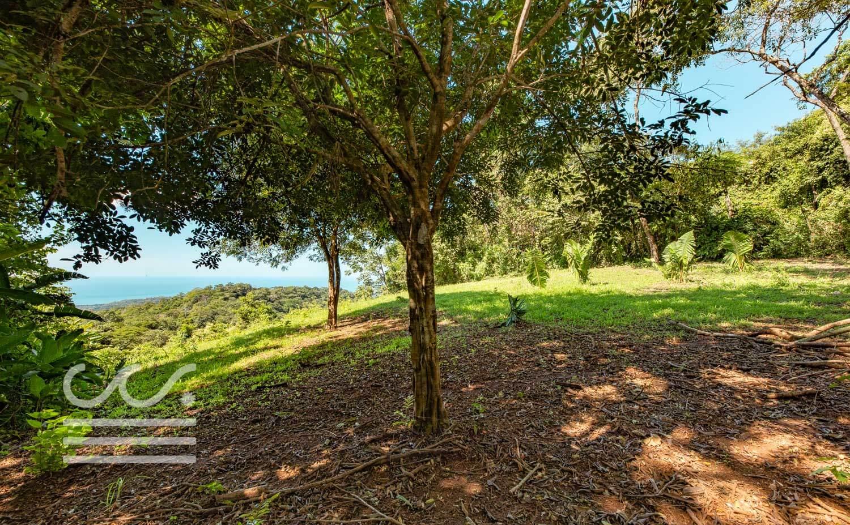 Bosque-Verde-45B-Wanderlust-Realty-Real-Estate-Rentals-Nosara-Costa-Rica-8.jpg