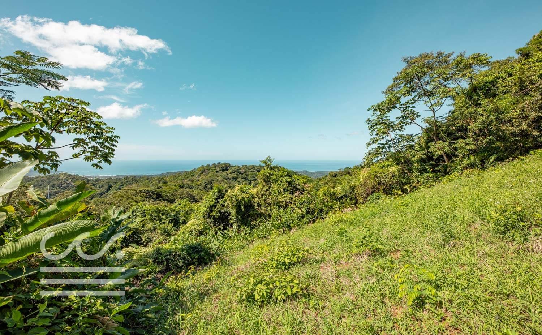 Bosque-Verde-45B-Wanderlust-Realty-Real-Estate-Rentals-Nosara-Costa-Rica-10.jpg