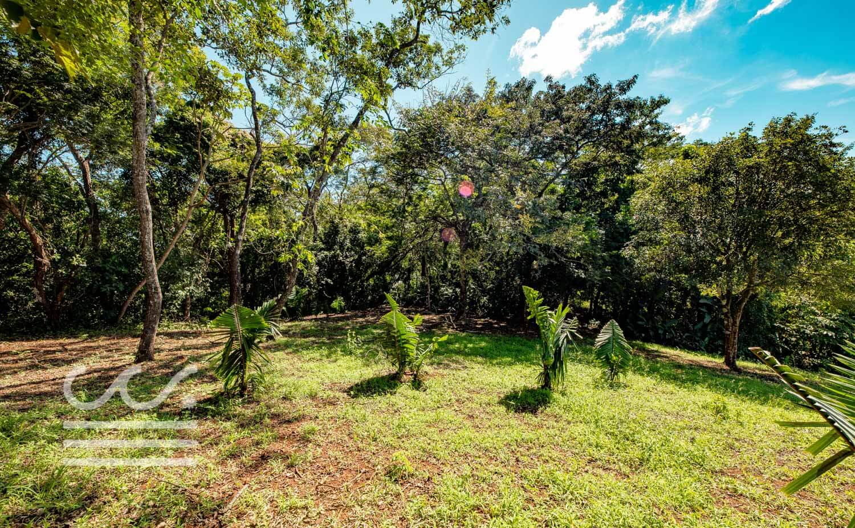 Bosque-Verde-45B-Wanderlust-Realty-Real-Estate-Rentals-Nosara-Costa-Rica-11.jpg