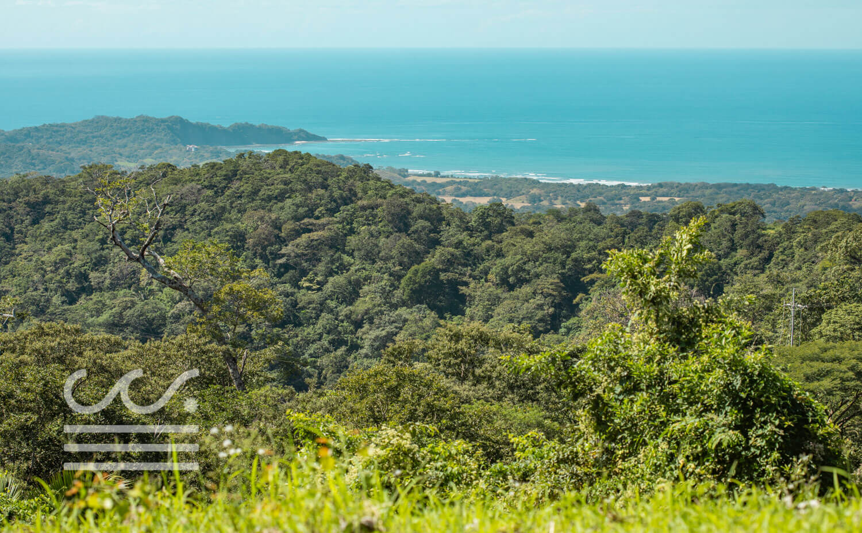 Bosque-Verde-45B-Wanderlust-Realty-Real-Estate-Rentals-Nosara-Costa-Rica-15.jpg